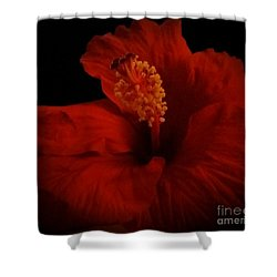 Hibiscus Shower Curtain by Tammy Herrin