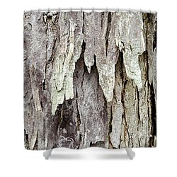 Shower Curtain featuring the photograph Hickory Tree Bark Abstract by Christina Rollo