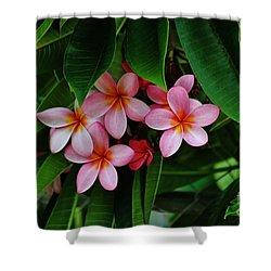 Hidden Beauties Shower Curtain by Craig Wood