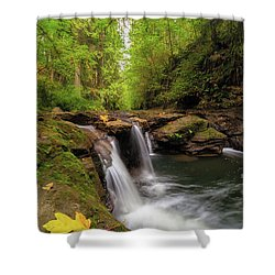 Hidden Falls At Rock Creek Shower Curtain by David Gn