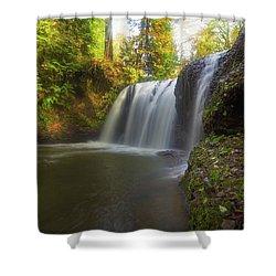 Hidden Falls In Rock Creek Shower Curtain by David Gn