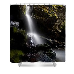 Hidden Falls Shower Curtain by Mike  Dawson