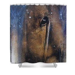 Hidden Horse Shower Curtain