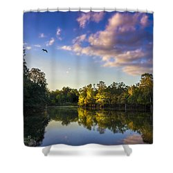 Hidden Light Shower Curtain by Marvin Spates