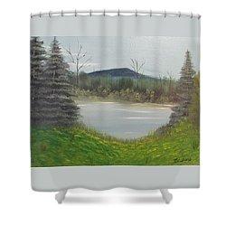 Hidden Pond  Shower Curtain by Thomas Janos