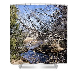 Hidden Swimming Hole Shower Curtain by Ricky Dean