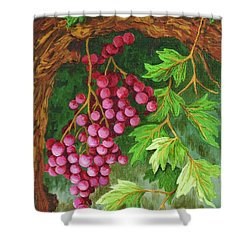 Shower Curtain featuring the painting Hidden Treasure by Katherine Young-Beck