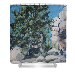 Hidden Valley Shower Curtain by Richard Willson