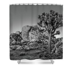 Hidden Valley Rock Shower Curtain