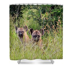 Hide-n-seek Hyenas Shower Curtain