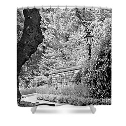 Hiding In Black And White. Shower Curtain