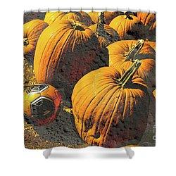 Hiding In Plain Pumpkin Shower Curtain