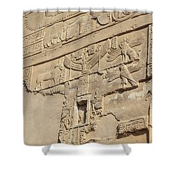 Shower Curtain featuring the photograph Hieroglyphic by Silvia Bruno