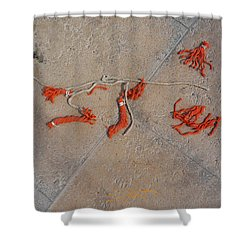High And Dry Shower Curtain by Charles Stuart