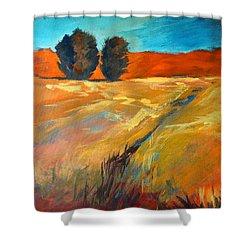 High Desert Shower Curtain
