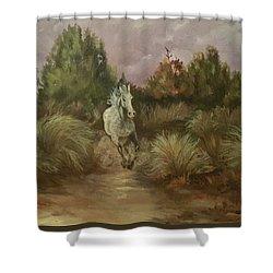 High Desert Runner Shower Curtain