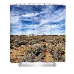 High Desert Shower Curtain