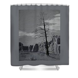 Shower Curtain featuring the painting High Desert Skeleton by Nancy Jolley