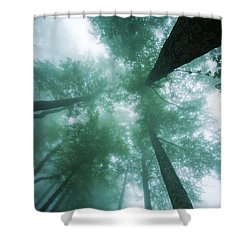 High In The Mist Shower Curtain by Evgeni Dinev