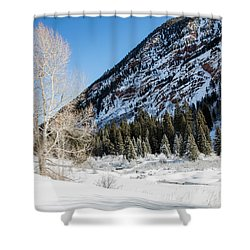 High In The Rockies Before Independence Pass Shower Curtain