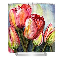 High In The Sky Shower Curtain by Harsh Malik