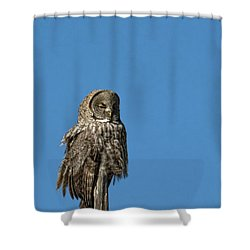 High Lookout Shower Curtain