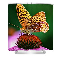 High Performance Shower Curtain by Barbara S Nickerson
