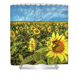High Plains Sunflowers Shower Curtain