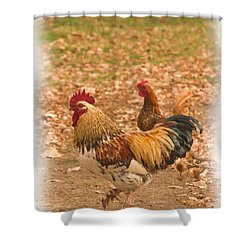 High Stepping Rooster Shower Curtain