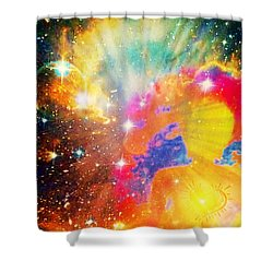 Higher Perspective Shower Curtain