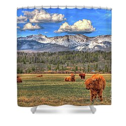 Highland Colorado Shower Curtain