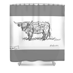 Highland Cow Field Sketch Shower Curtain