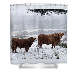 Highlanders In Snow Shower Curtain