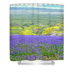 Hike To The Top Of Temblor Range Shower Curtain