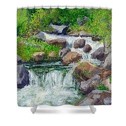 Hiker's Delight Shower Curtain
