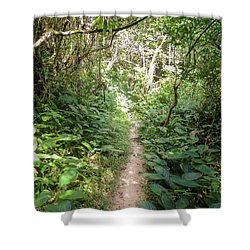 Hiking Path In The Atlantic Forest Shower Curtain