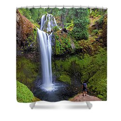 Hiking To Falls Creek Falls Shower Curtain by David Gn