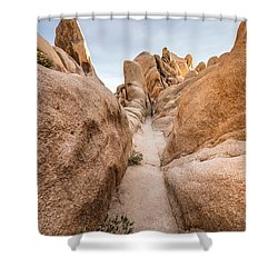 Hiking Trail In Joshua Tree National Park Shower Curtain