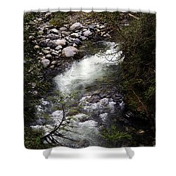 Hiking Wallace Falls#1 Shower Curtain