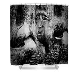 Hildebald Shower Curtain