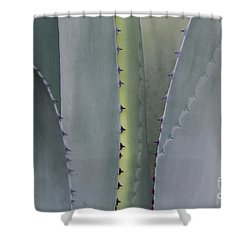 Hill Country Agave Shower Curtain