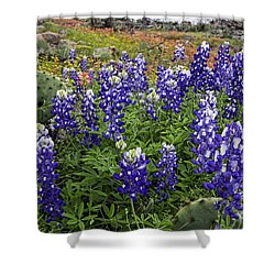 Hill Country Palette Shower Curtain