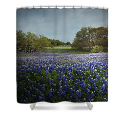 Hill Country Ranch Shower Curtain by Susan Rovira