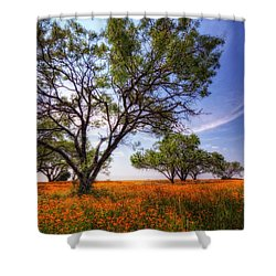 Hill Country Spring Shower Curtain