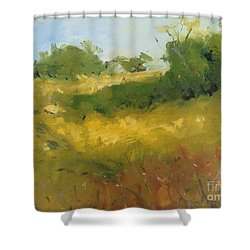 Hill In Richmond Shower Curtain