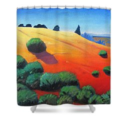 Shower Curtain featuring the painting Hills And Beyond by Gary Coleman