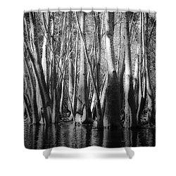 Hillsborough Zen Shower Curtain