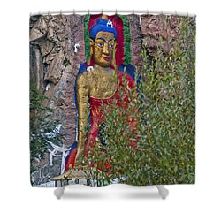 Hillside Buddha Shower Curtain by Alan Toepfer