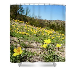 Hillside Flowers Shower Curtain by Ed Cilley