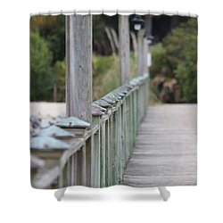 Hilton Beachway Shower Curtain